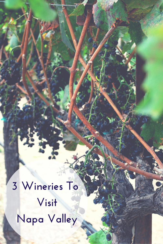 3 wineries to visit Napa Valley