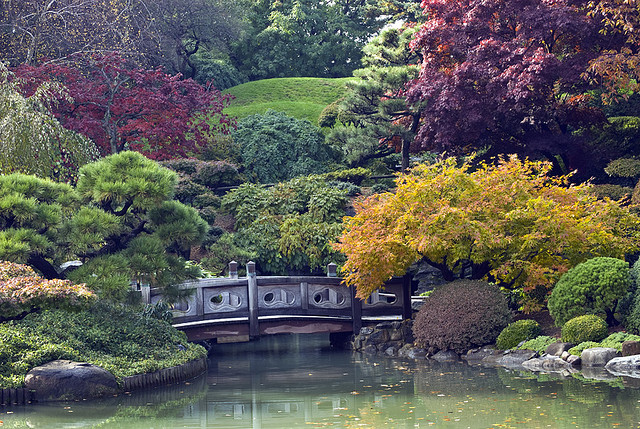 Fall in nyc things to do as told by ash and shelbs for Brooklyn botanical garden tickets