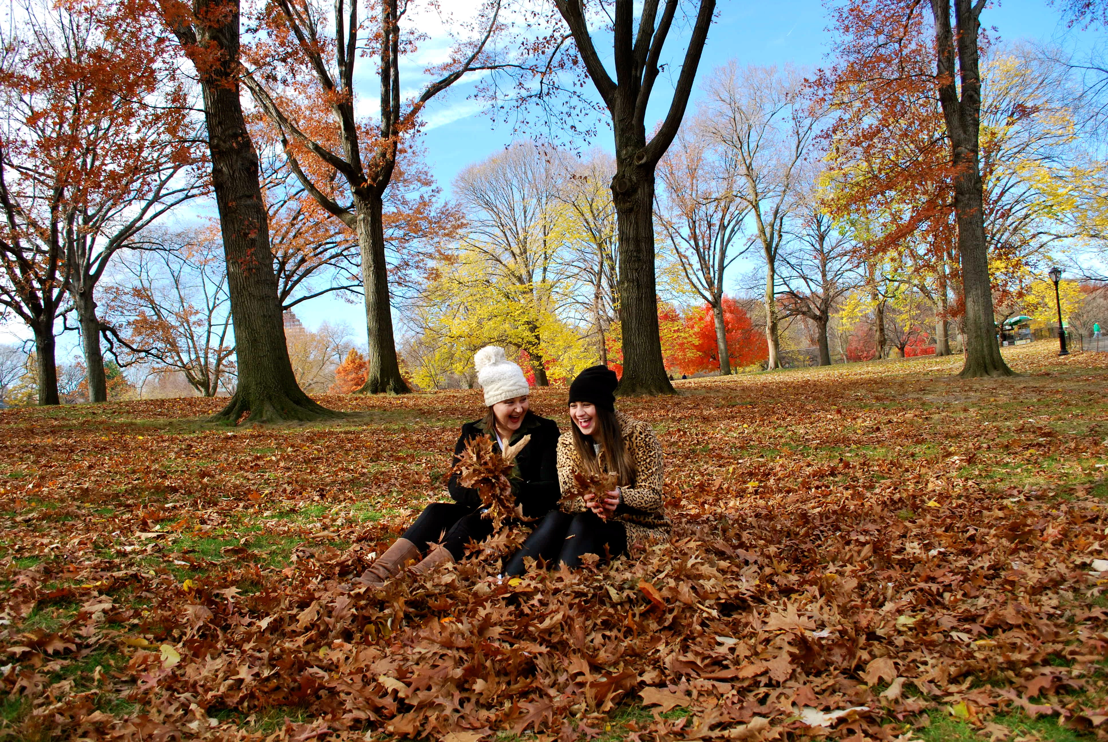 Fall in nyc things to do as told by ash and shelbs for Things to do at central park