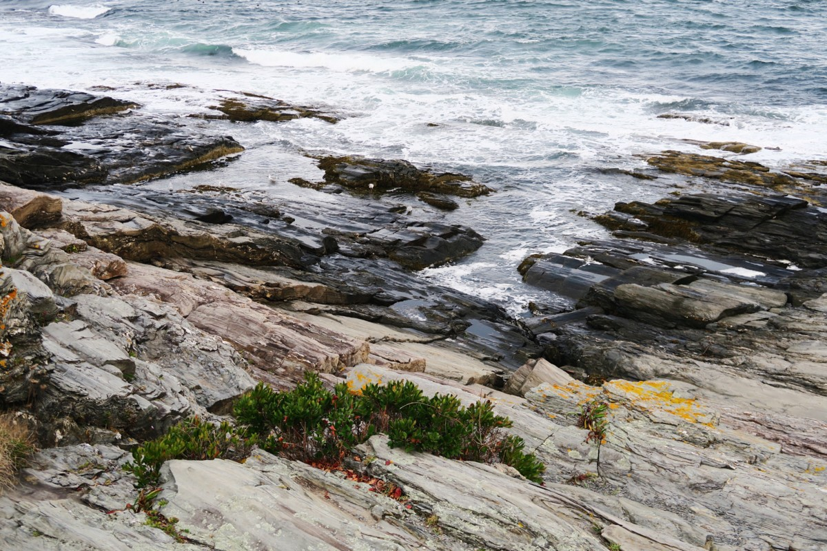 Portland, Maine | Travel Diary