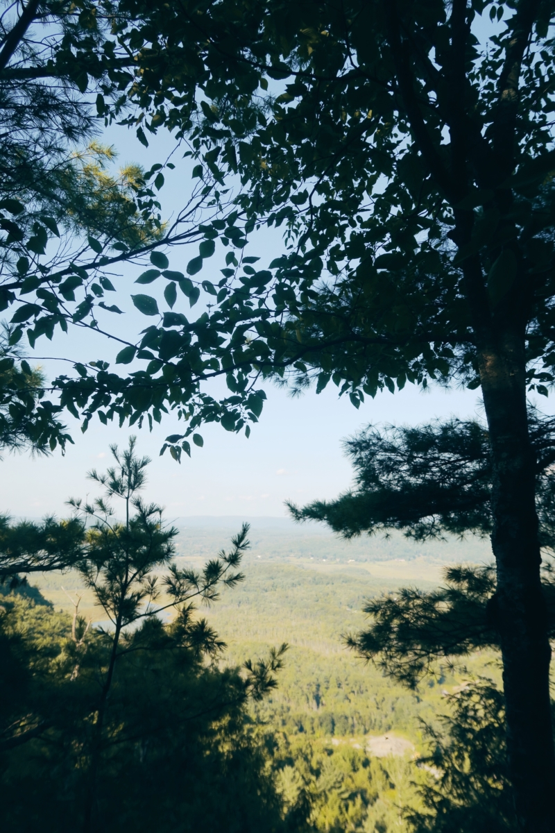 The Berkshires | Travel Diary