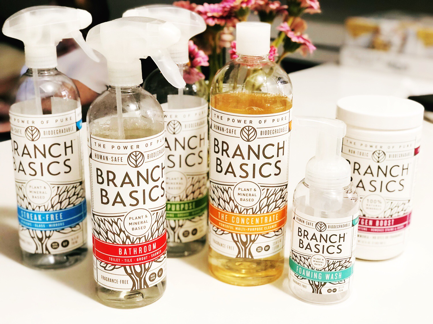 Branch Basics Non Toxic Cleaning Products As Told By Ash And Shelbs